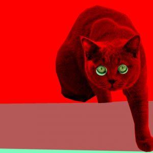 Love Squad Ausstellung liebe Katze Tanja Kischel München